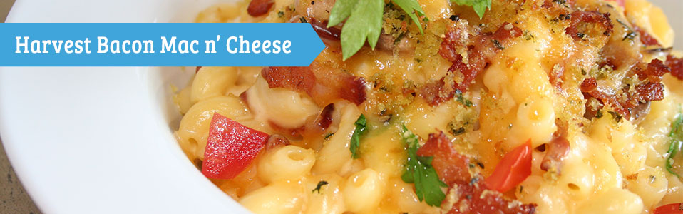 Harvest Bacon Mac n' Cheese