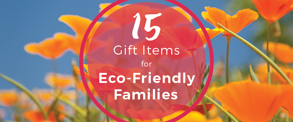 15 gift items for eco-friendly families