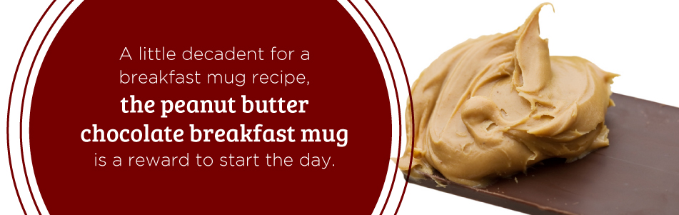 Peanut Butter Chocolate Breakfast Mug