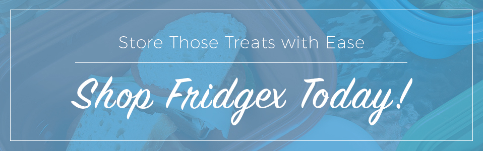shop fridgex today