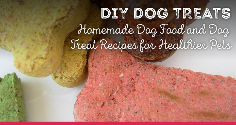 Homemade Dog Food and Dog Treat Recipes