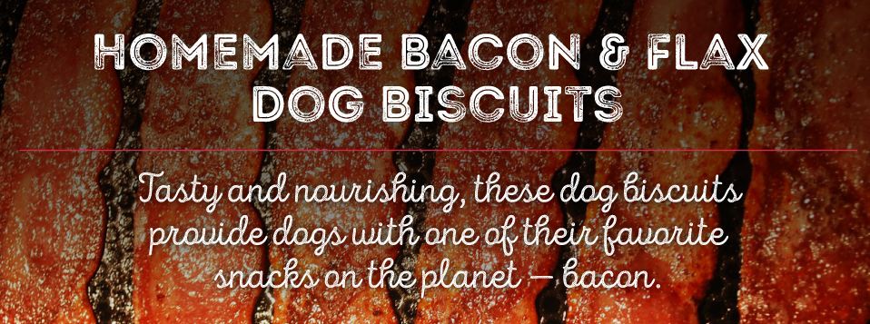 Homemade Bacon & Flax Dog Biscuits